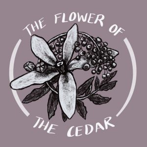 The Flower of the Cedar, by Kay ben-Avraham